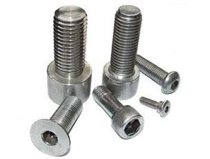 Stainless steel bolt system